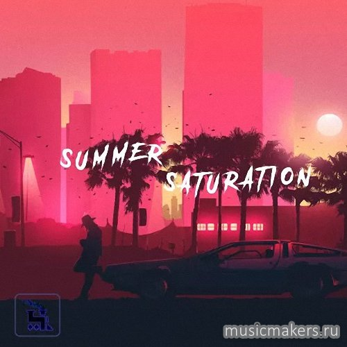 TrakTrain - Summer Saturation Kit by Kazoo (WAV)